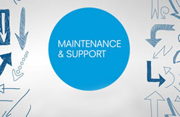 Annual Support & Maintenance